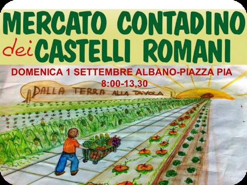 Mercato contadino dei Castelli romani