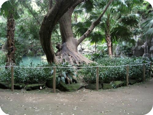 Reggia di caserta il giardino inglese il sito di - Venere allo specchio velazquez ...