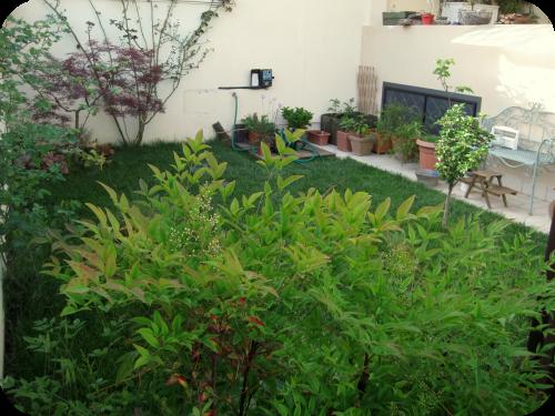 L 39 orto di roberta il sito di roberta cucito creativo - Mattonato per giardino ...